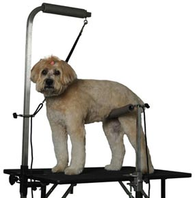 The Groomer S Mall Pet Handling And Safety Systems